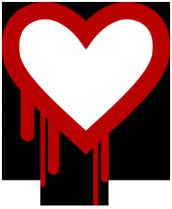 Heartbleed Bug: What Should You Do?